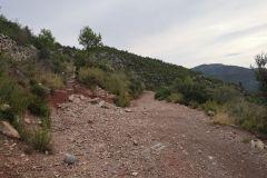 Camí de la Cova del Petrecó; a la izquierda corriol / sendero al Mas Manader (Mas Moneder)