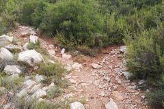 Bifurcación en el corriol / sendero al Mas Manader (Mas Moneder)