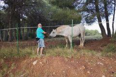 Benjamí con uno de los caballos de la masía de Ca n'Angel en la explanada de Can Roca