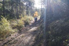 Camino a la Cova del LLucià