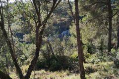 Las Roques Blaves (Els Blaus) desde el camí de les Bramones hacia Can Roca