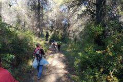 Corriol / sendero al turó / colina de Can Dolcet
