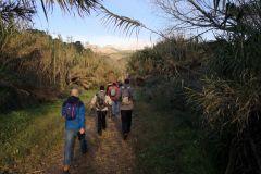Camino paralelo al LLobregat