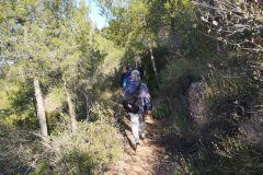 Camino al Coll de Can Rubió (Italiano)