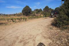 Intersección camino a Can Rial; tomar el camino a la derecha