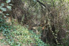 Restos de pasarela metálica sobre la riera de Can Golart