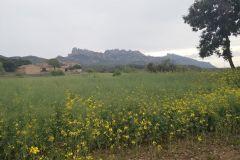 Vista de Montserrat y de la masía que hemos dejado atrás
