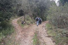 Desvío en el camino a la Balma de Can Solà; seguiremos el camino principal