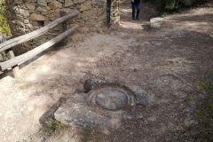 Restos de ubicación de prensa para uva