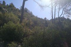 Camino a la Cova del Senecó