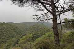 Mirador a Roques Blanques