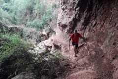 Balma o cova del Pons