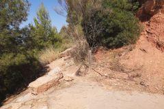 Final / inicio del sendero a la cova Gran desde la carretera a las 'coves del Salnitre'