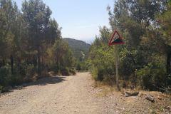 Coll de can Rubió (Italiano); inicio del descenso hacia Esparreguera