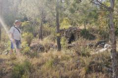Barraca de piedra seca CP-1 en la pista forestal de ca n'Estruc
