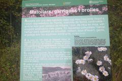 Panel informativo sobre la flora