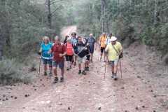 Por la pista forestal hacia el LLac de Formigosa